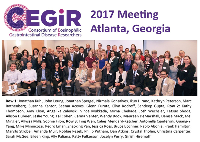 CEGIR members at the 3rd annual CEGIR investigator meeting (March 2017)